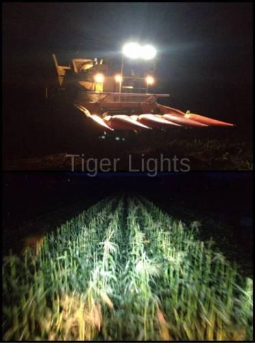 "Tiger Lights - LED 4"" x 6""  Rectangular Flood/Spot, TL175F - Image 5"